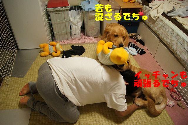 11_20120507014218.jpg