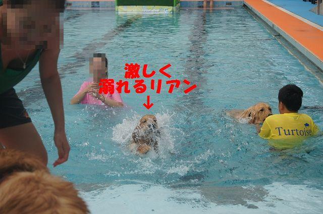11_20121029044535.jpg