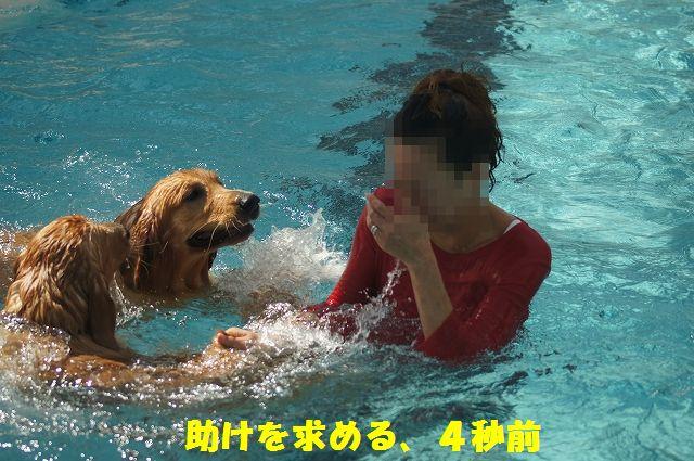11_20121029101556.jpg