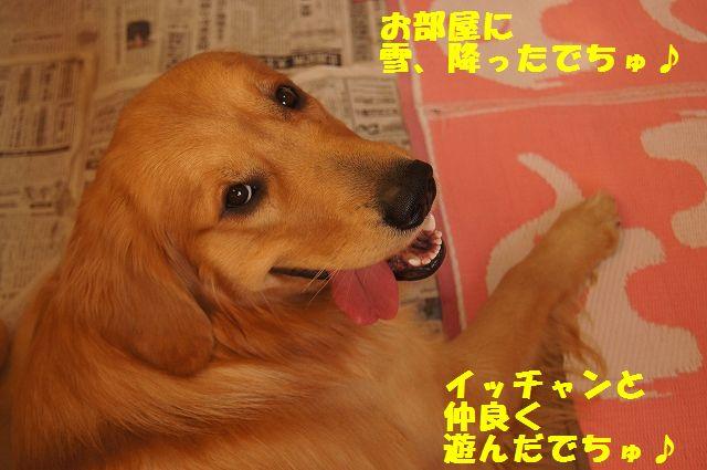 11_20130103172137.jpg