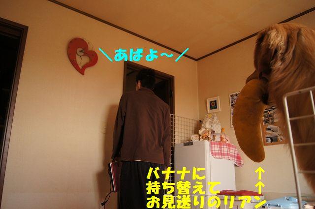 11_20130116171610.jpg