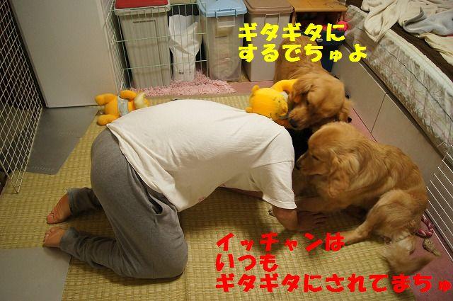 12_20120507014216.jpg