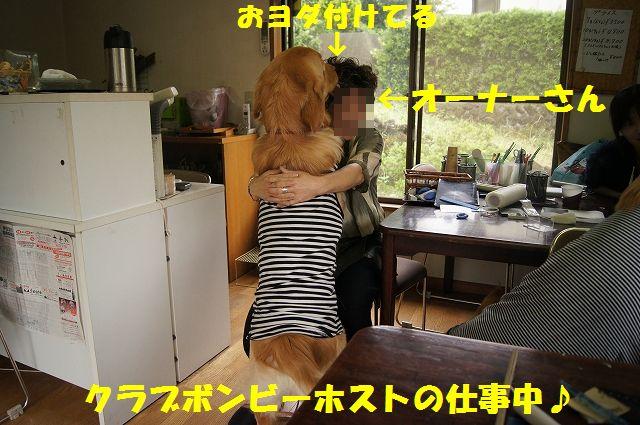 12_20120626093055.jpg