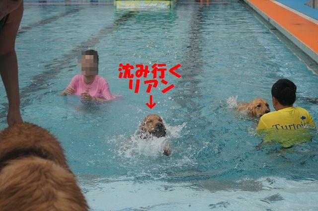 12_20121029044534.jpg