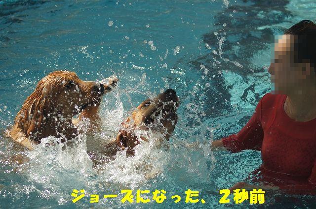 13_20121029101622.jpg