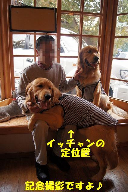 13_20121225024541.jpg