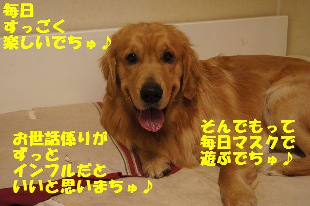 13_20130119070514.jpg