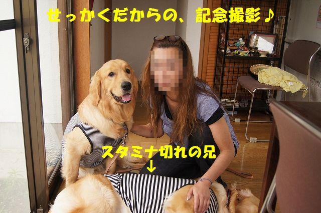 14_20120626093137.jpg