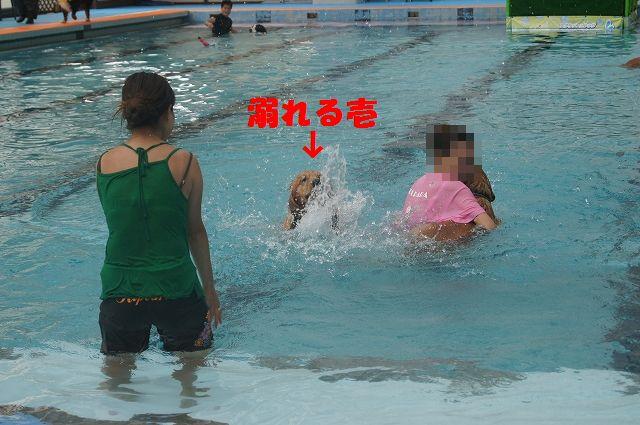 14_20121029044620.jpg