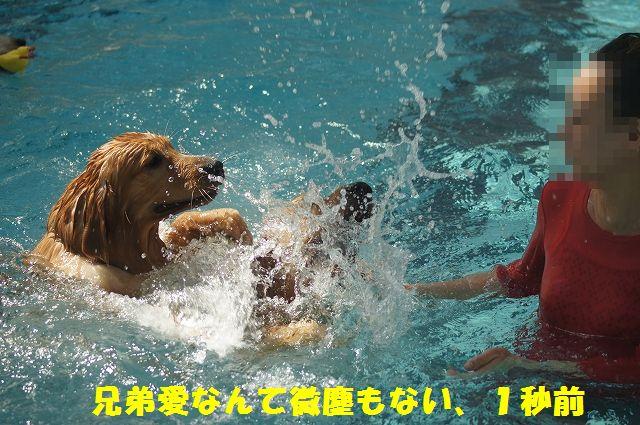 14_20121029101621.jpg