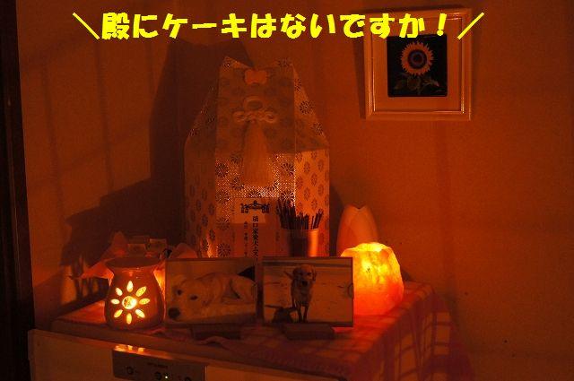 14_20121225024542.jpg
