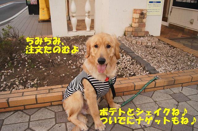 15_20120511102117.jpg