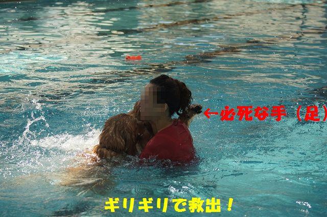 15_20121029101621.jpg