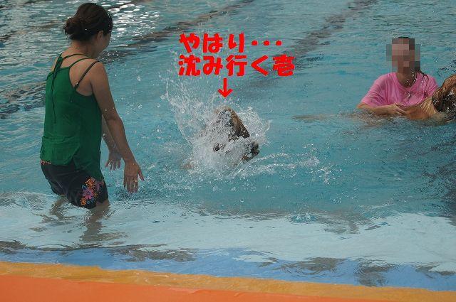 16_20121029044619.jpg