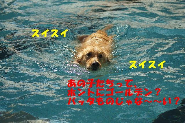 16_20121029101620.jpg