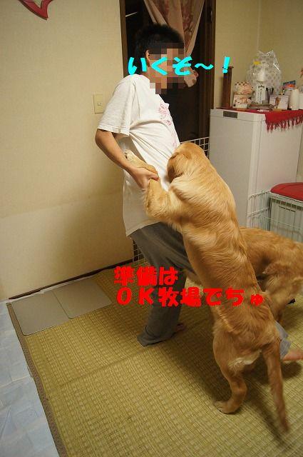 17_20120507014246.jpg