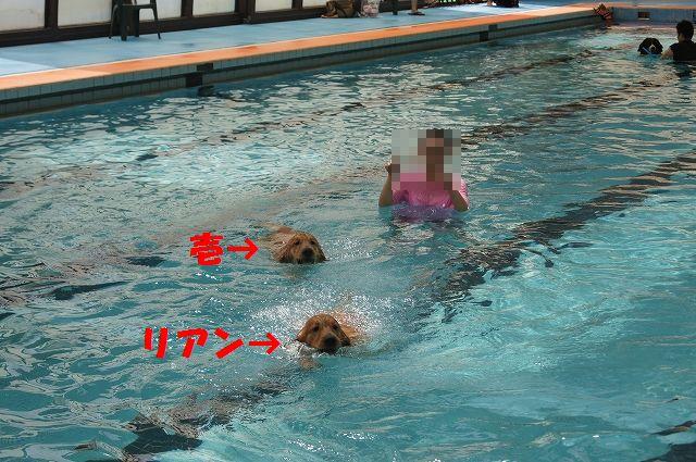 17_20121029044618.jpg