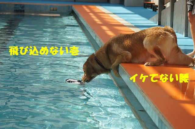 17_20121029101620.jpg