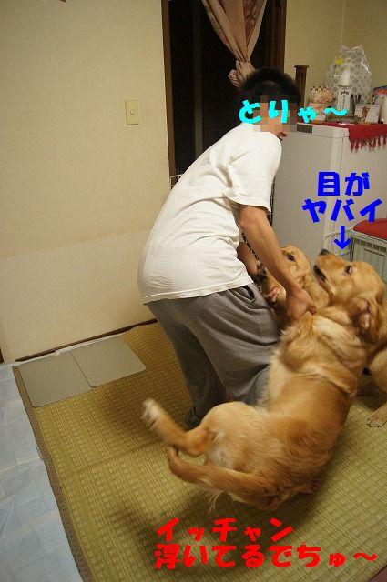 18_20120507014245.jpg