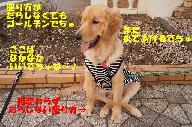 18_20120511102115.jpg