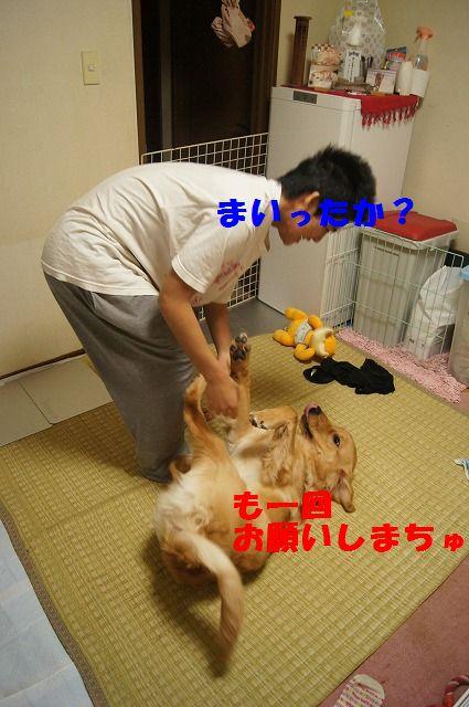 19_20120507014244.jpg