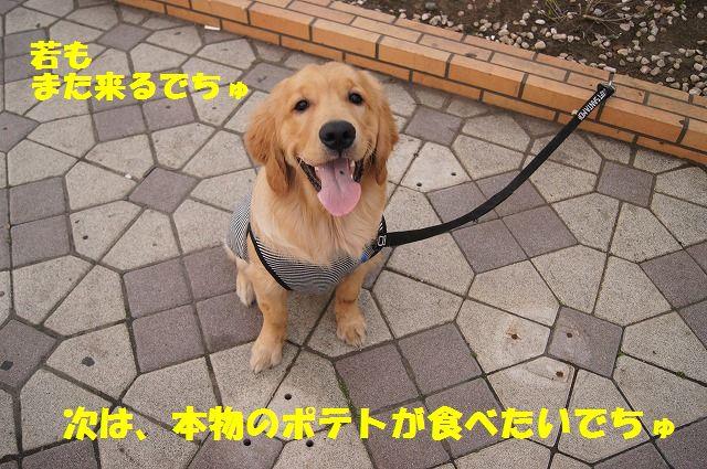 19_20120511102128.jpg