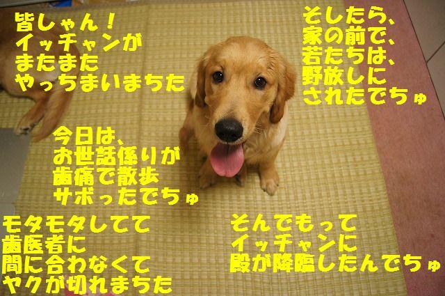 1_20120430000353.jpg