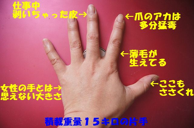 1_20120528213651.jpg