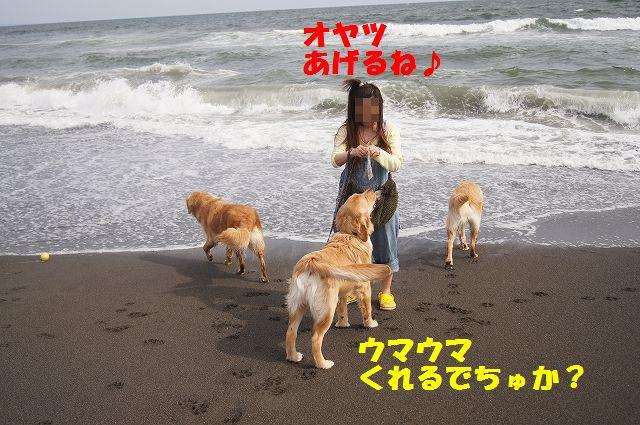 1_20120608003359.jpg