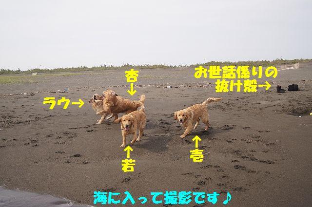 1_20120608011746.jpg
