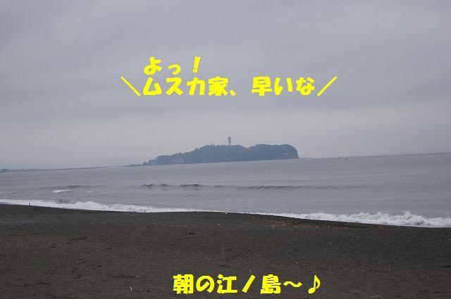 1_20120611202310.jpg