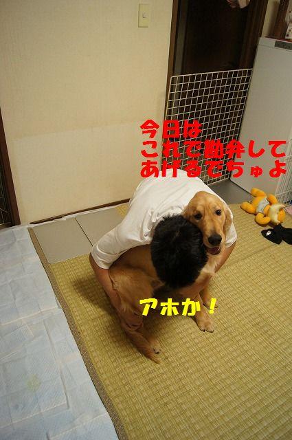 20_20120507014257.jpg