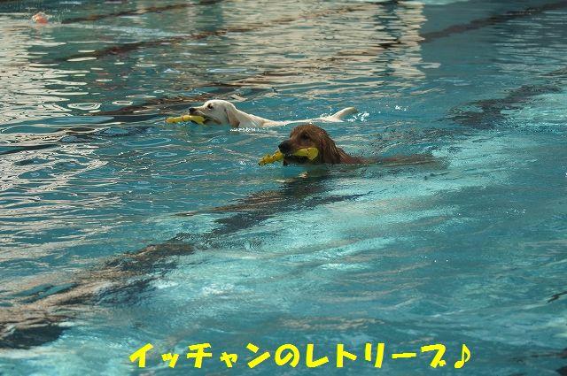20_20121029101650.jpg