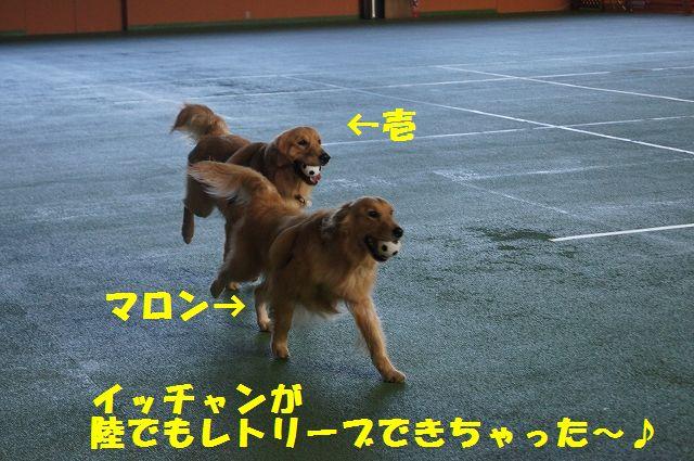 22_20121029101649.jpg