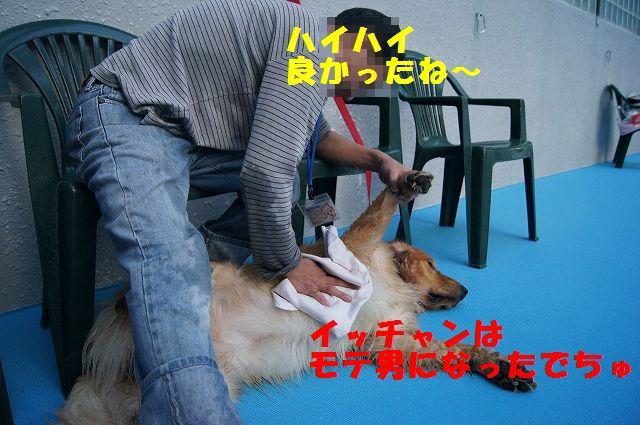 25_20121029110737.jpg