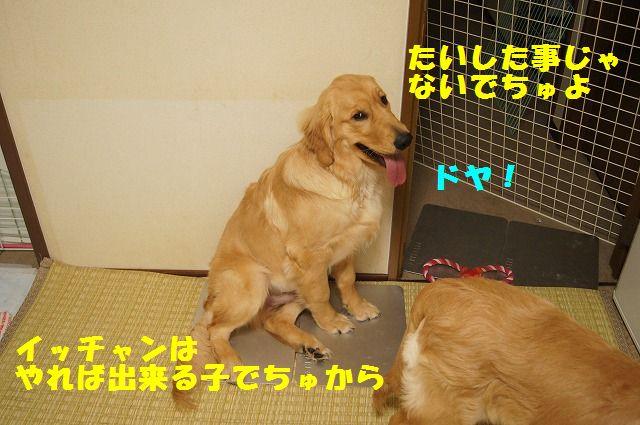 2_20120430000352.jpg