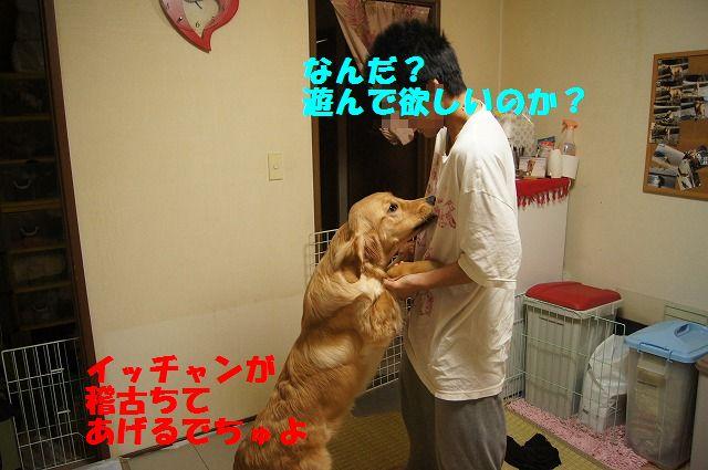 2_20120507014058.jpg