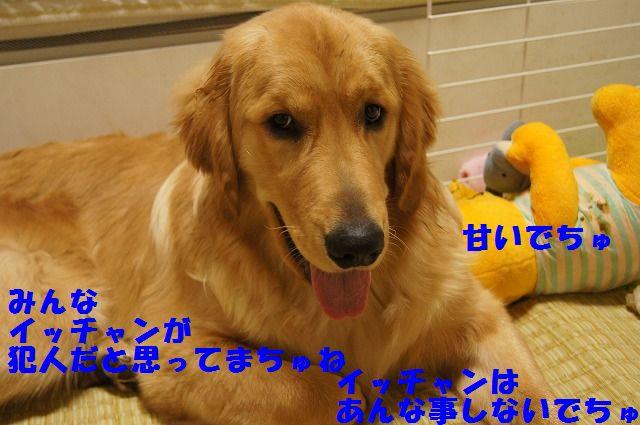 2_20120509214113.jpg