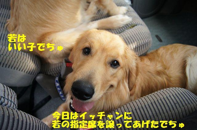 2_20120607234018.jpg