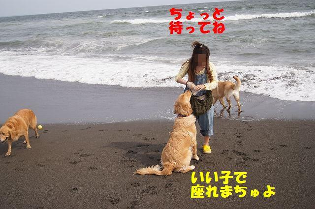 2_20120608003358.jpg