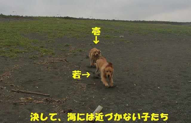 2_20120611202309.jpg