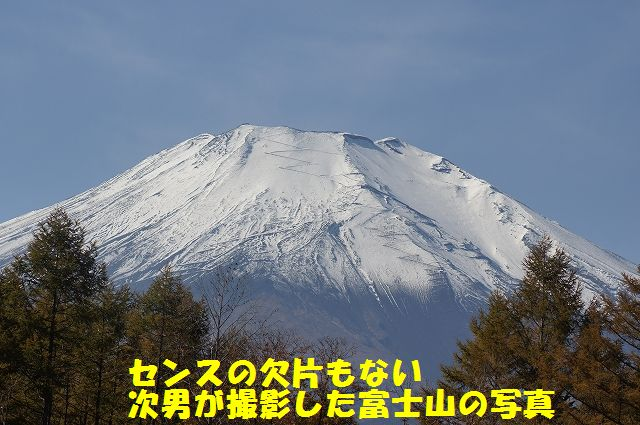 2_20121121031931.jpg