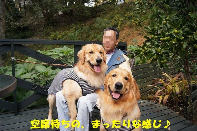 2_20121225024458.jpg