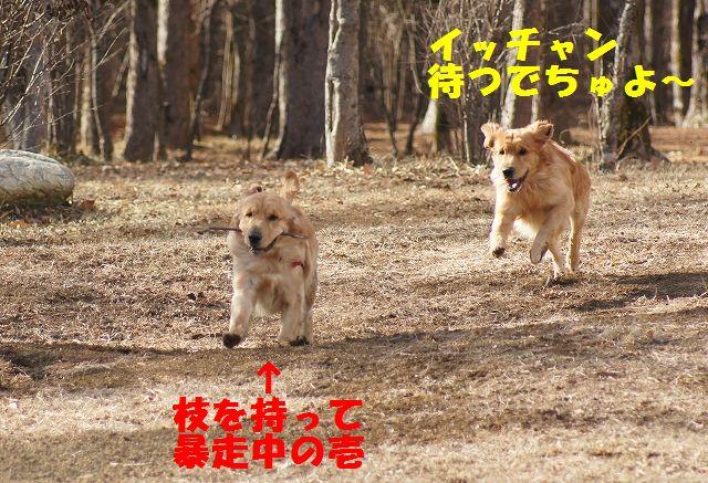 2_20121226041110.jpg