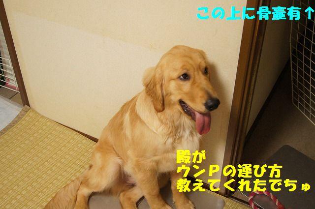 3_20120430000351.jpg