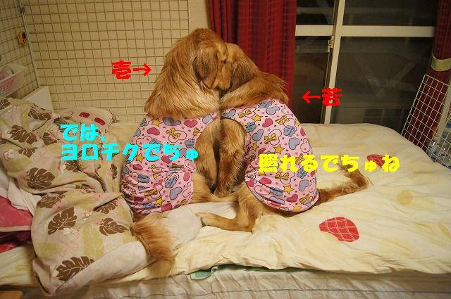 3_20120504013010.jpg
