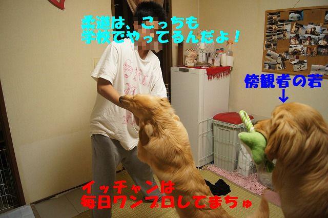 3_20120507014057.jpg