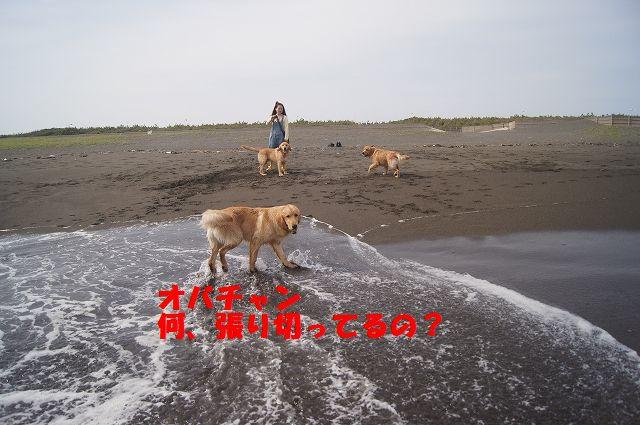 3_20120608011744.jpg