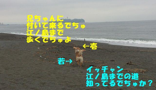 3_20120611202308.jpg