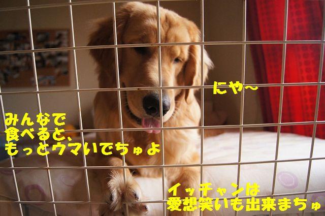 3_20120613232530.jpg